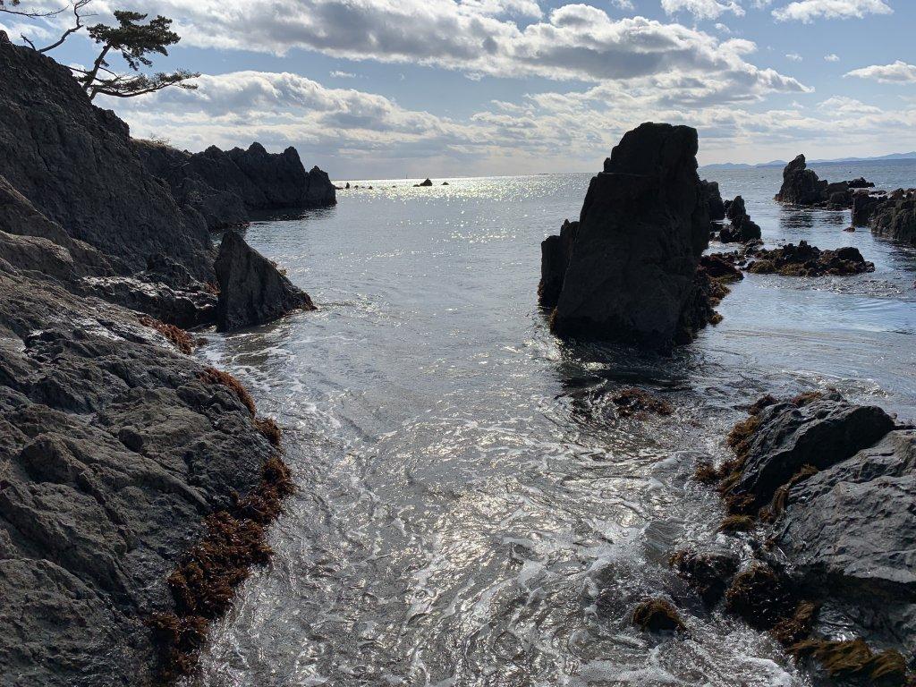 雑海藻生息場